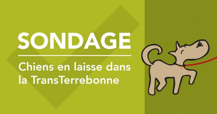 Sondage projet pilote : chiens en laisse dans la TransTerrebonne