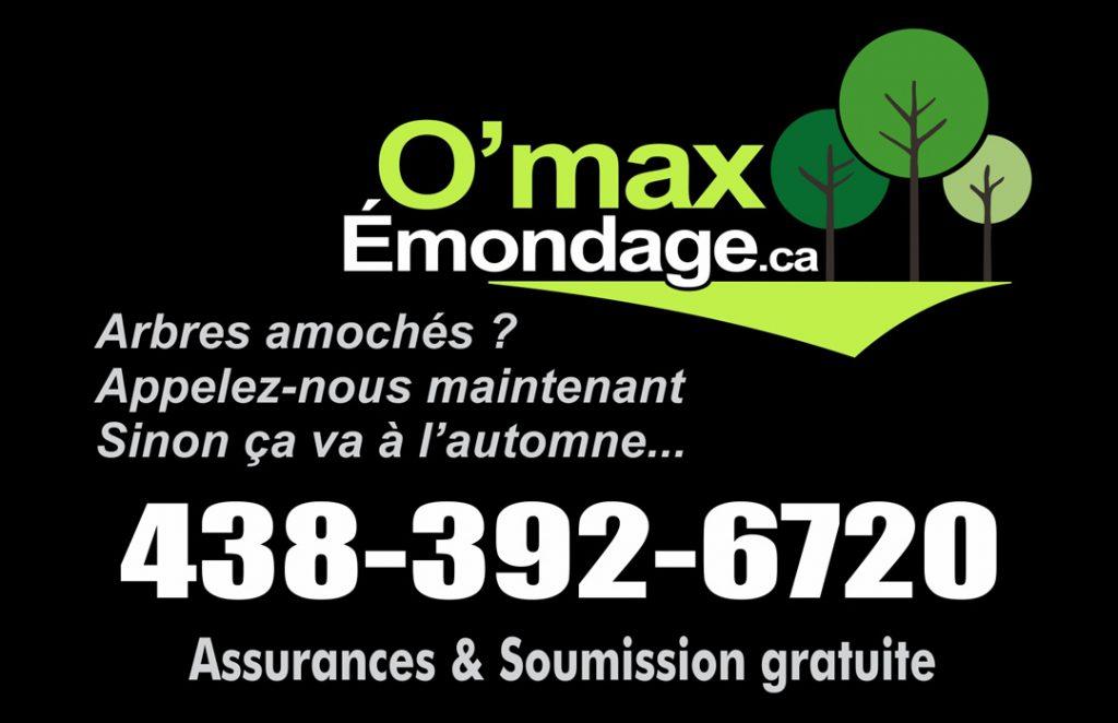 Émondage Lanaudière & Laurentides