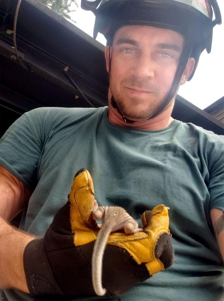 L'Émondeur qui sauve des écureuils